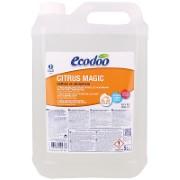 Ecodoo Citrus Magic Spray 5L