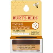 Burt´s Bees Exfoliant Revitalisant pour les Lèvres